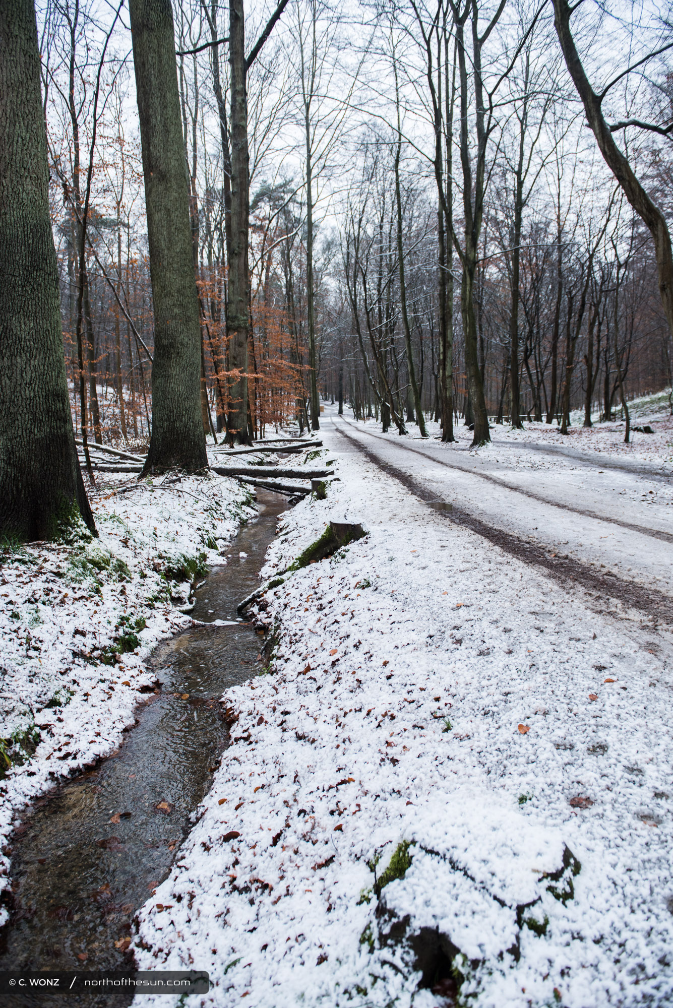 Brussels, nature, snow